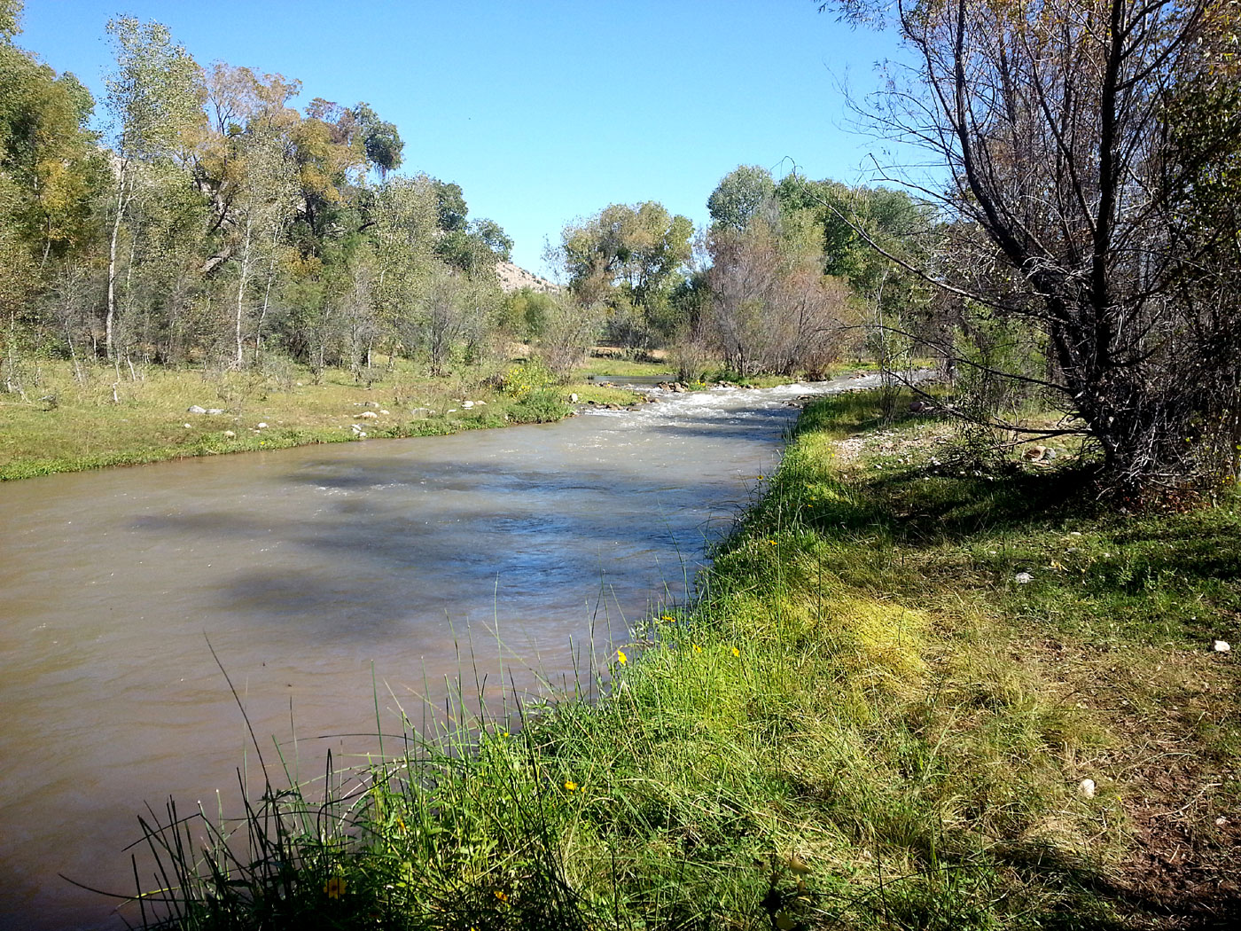The Verde River